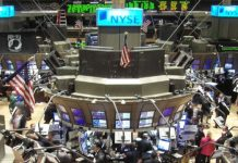 stock market viral-a