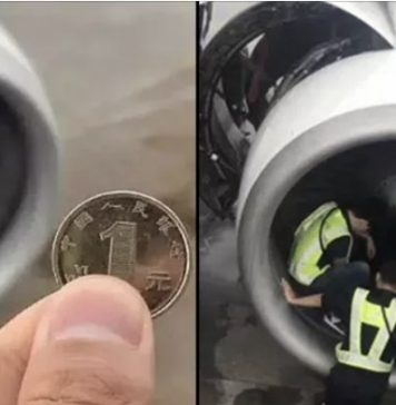 two passengers detained for throwing coins in plane