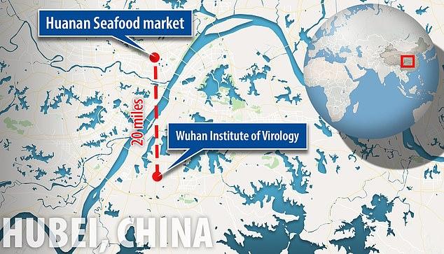 Huanan Sea Food Market viral-a.com
